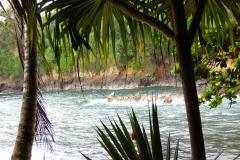 Hillo_Tropical_Garden_-_0002