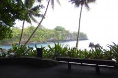 Hillo_Tropical_Garden_-_0015