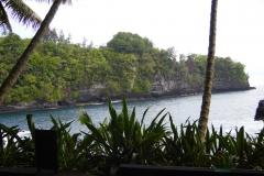 Hillo_Tropical_Garden_-_0016