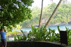 Hillo_Tropical_Garden_-_0017