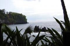 Hillo_Tropical_Garden_-_0019