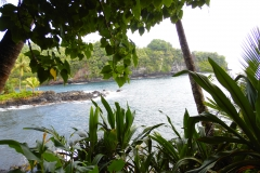 Hillo_Tropical_Garden_-_0020